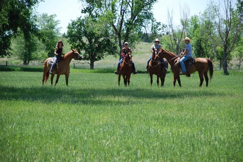 Peckerneck Trail Riding